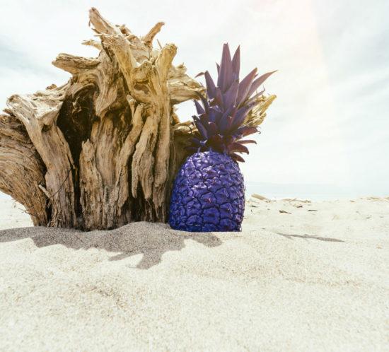 pinterest ananas viola