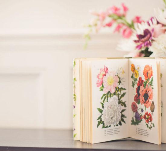 bookbank piacenza, servizio di copywriting e naming