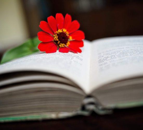 scrittura professionale, scrittura creativa, consigli per scrivere bene, copywriting tips